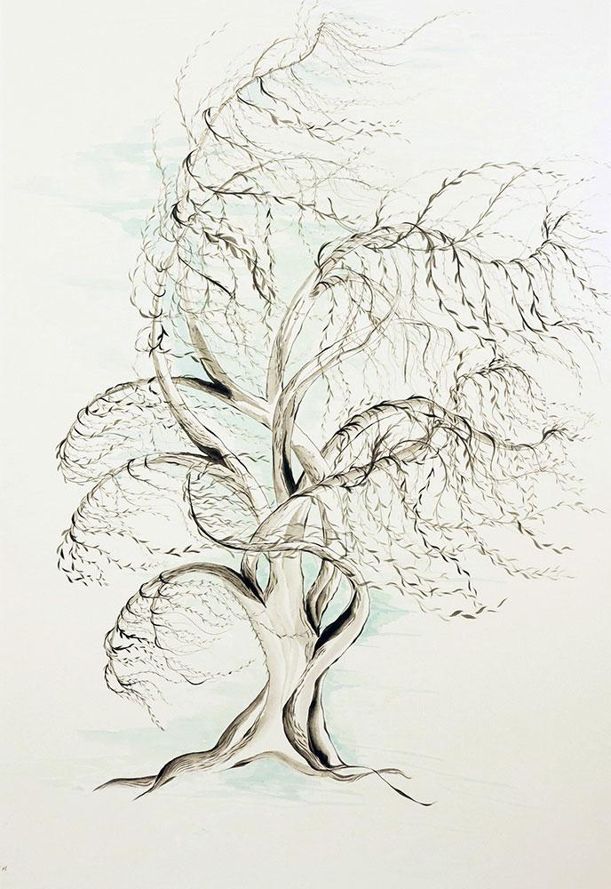 roya-alami_023_bloom_bewildered-willow